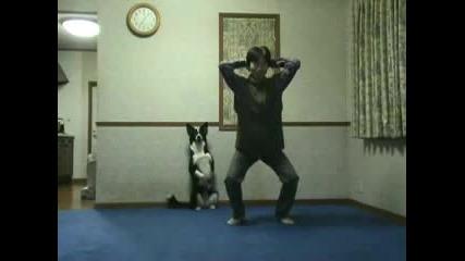 Куче което прави упражнения