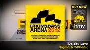 Drum & Bassarena 2012 Album Megamix