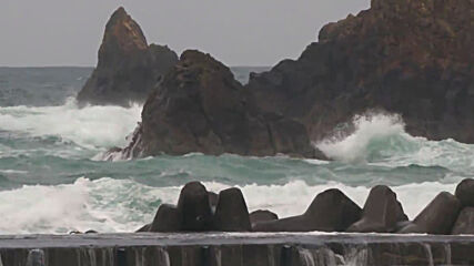 Japan: Waves lash Pacific coast as tropical storm Dolphin approaches