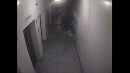 Запис На Охранителна Камера Ii