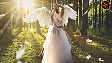 Cvetocek7 - Крылья мои