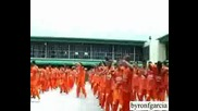 Затворници Танцуват На Flo Rida - Low