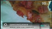 """""""Моята новина"""": Храна с хлебарки"""