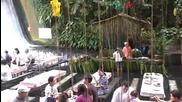 Най-уникалното място в света - ресторант във Филипини е направен във вода под водопад