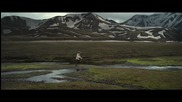 Bon Iver - Holocene ( Official Music Video H Q )