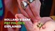 What the hell does a Dutch weed activist fight for?