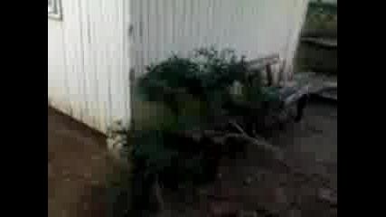 След Бурята В Китен На 12.08.2007 Г.