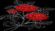 Червени рози ...