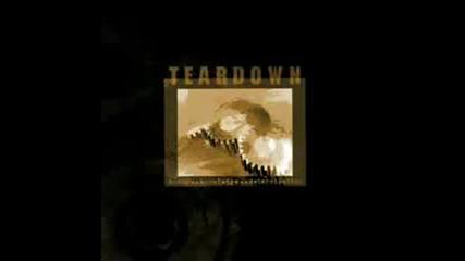 Teardown - Against the dying light (превод)