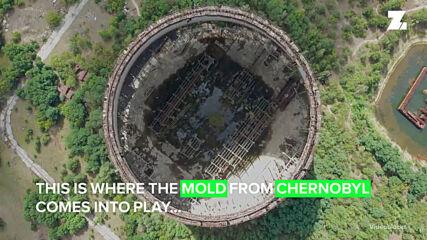 Ти да видиш: Плесен от Чернобил може да предпази космонавтите в космоса!