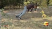 Еротичен танц с дърво..