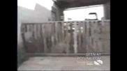 Луд Овен напада човек събаря ограда чупи кола и несе спира пред нищо Голям смях