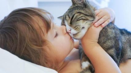 13 начина, по които котката ви казва, че ви обича