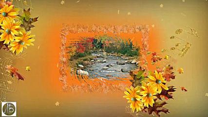 Моя Золотая Осень!
