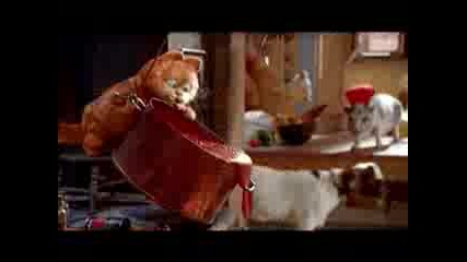 Hotvnews Presents ... Garfield 2