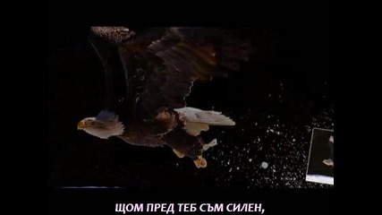 [превод] Аз отново ще стана орел / Giorgos Giannias - Ego tha ksanagino aetos