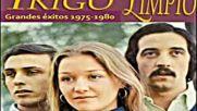Trigo Limpio -las Pequenas Cosas 1984