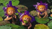 Принцеси на водните полета ... ...