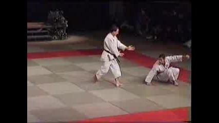 Айкидо Йошинкан Демонстрация