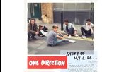 Превод! One Direction - Story Of My Life