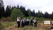 LG G4 Тест Видео! Залесяване на Витоша