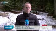 Лавина уби млад сноубордист в Пирин