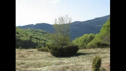 Витоша, България