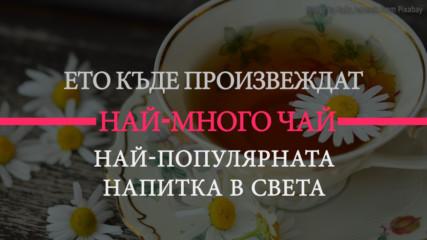 Всички обичат чай, но къде се произвежда най-много?