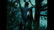 Twilight [2]