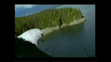 Райски места - Ледниковият залив Част 1