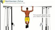 Упражнения за гръб и мускули на ръцете