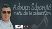 Adnan Sibonjic __ Necu da te zaboravim Audio 2017