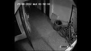 крадци на колелета в Русе