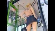 Мацка привлича погледите на хората в автобуса