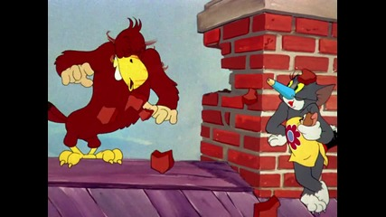 Том и Джери: Птичето