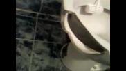 otvarqne na vino v toaletna chiniq