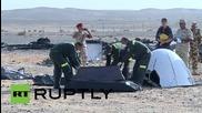 Egypt: Bodies retrieved from Sinai crash sight of Russian flight 7K9268