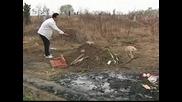 Куче тъгува за стопанина си край гроба му, отказва да си тръгне