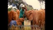 Връзката между хората и животните - National Geographic [бг субтитри]