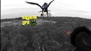 Голям морски орел атакува дрон - Австралия част 2