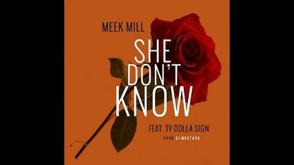 Meek Mill feat. Ty Dolla $ign - She Don't Know (prod. By Dj Mustard)