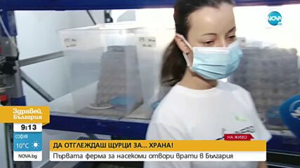 В България отвори врати първата ферма за....щурци