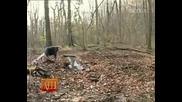 Голям Труд , Голяма шега в гората