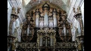 J. S. Bach - Toccata und Fuge in d-moll Bwv 565