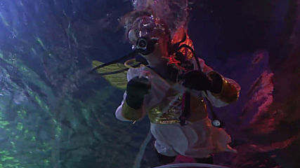 Diver Santa feeds fishes in Berlin's Sea Life aquarium