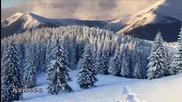Winter Memories - цигулка