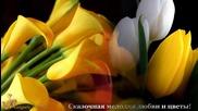 Сказочная мелодия любви и цветы