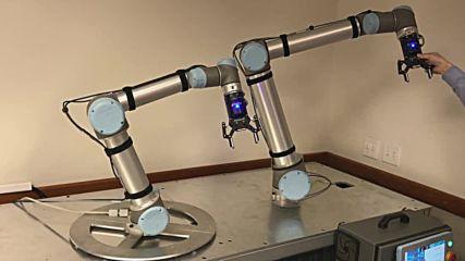 Роботчета :)