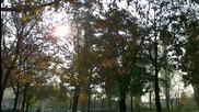 rampue - Sonne, Park und Sterni (original Mix)