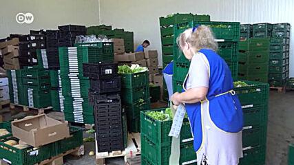 Красимир Кумчев: Какво ще ядат българите през зимата?